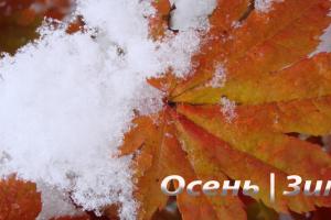 Новая коллекция Осень - Зима